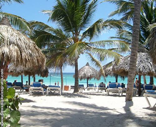 Cuba-Playa-Vegetacion-FDG